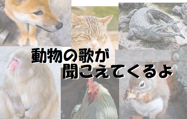 animal_songs